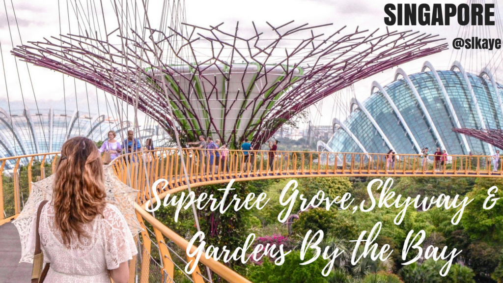 Super Tree Grove and Gardens By the Bay